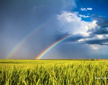 Daydream, Photography Print, Rainbows, Rainbow Print, Kansas, Wheat fields, Vivid Colors, America, Storm Photography, Wizard of Oz, Nature