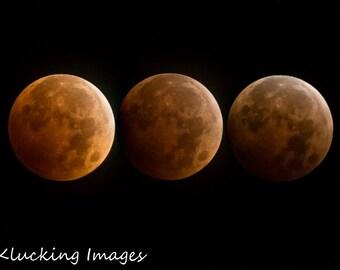 Lunar Eclipse Photograph, Blood Moon Photograph, Triple Blood Moon Photograph, Blood Moon, Eclipsed Moon