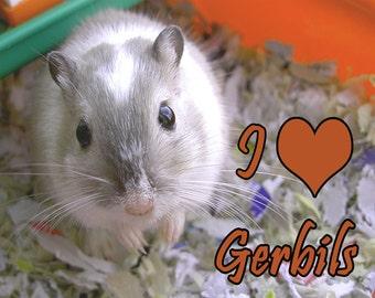 I Love Gerbils Fridge Magnet 7cm by 4.5cm