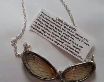 Real Cicada Wing Necklace - Real Insect Wing Necklace - 17 Year Cicada Wing Necklace