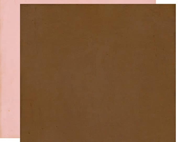 2 Sheets of Echo Park Paper THIS & THAT Graceful 12x12 Scrapbook Paper - Brown/Light Pink