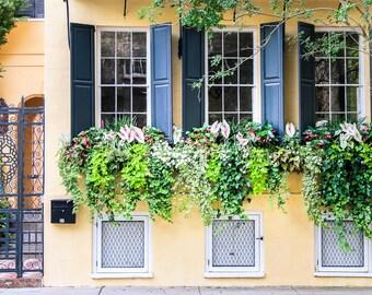 "Charleston Art, Window Photography, Fine Art Print, Window Box, Flowers, Yellow, Blue, Green, Southern Decor, Rustic - ""Three's a Charm"""
