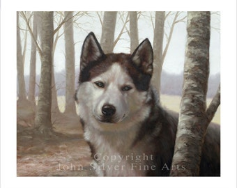 Siberian Husky in the woods. Limited Edition Print. Personally signed and numbered by Award winning artist JOHN SILVER. jsfa050