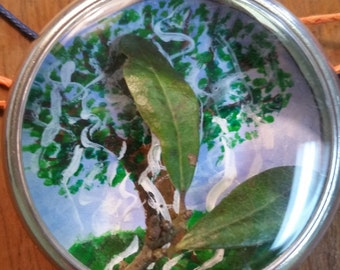 Auburn--Toomer's Tree Vintage Watch Case Necklace