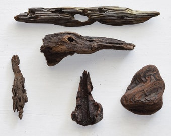 5 Pieces of Driftwood Natural Beach Wood for Kids Shark Themed Birthday Party, Mermaid Party, Pool Party, Beach Décor, Arts, Crafts