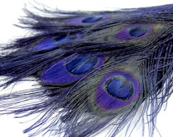 """4 Navy Blue Peacock Feathers - Wholesale Peacock Feathers, 4 Pieces - """"Navy Blue""""  Peacock Tail Eye Feathers. Perfect for your DIY projects."""