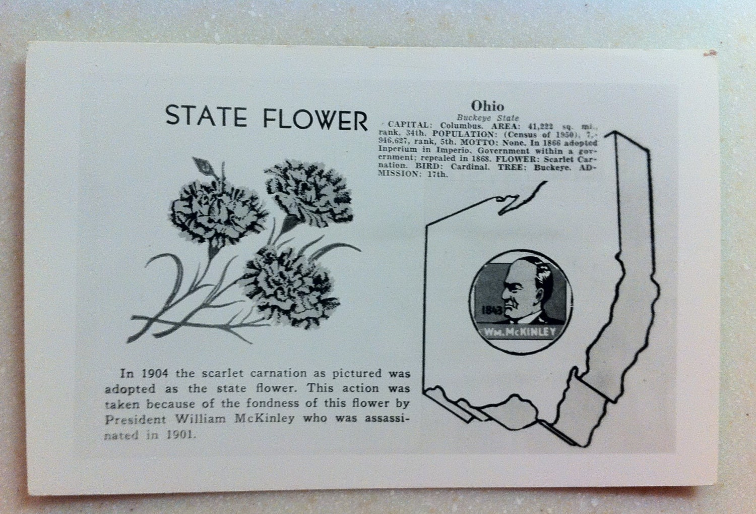Vintage Ohio Postcard RPPC State Flower and Ohio Facts