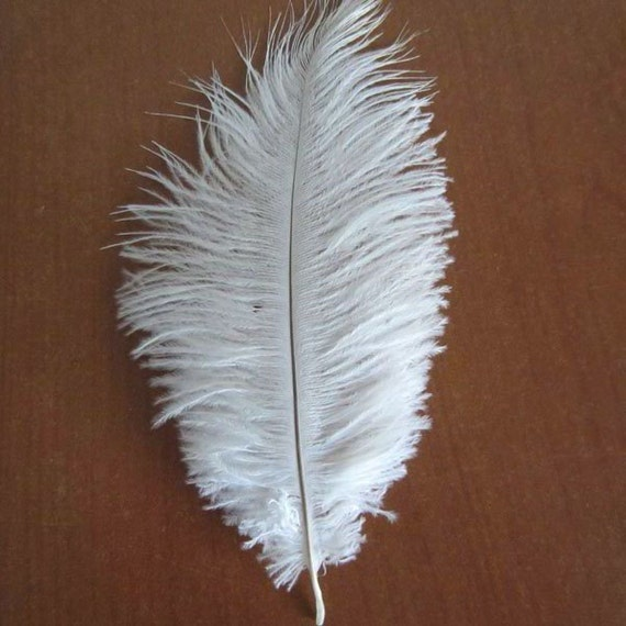 Decorative ostrich feathers vase filler centerpiece by