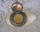 Victorian Shell Etui/Snuff Box/Small Case Mother of Pearl