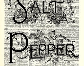 Salt and Pepper kitchen art print. Vintage dictionary page art print. Print on book page.