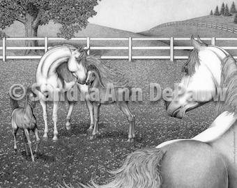Animal Family - Horses