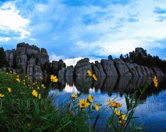 "Sunset Blooms on the Lake Custer State Park Loose Fine Art Photographic Print, Custer South Dakota 8""x12"""