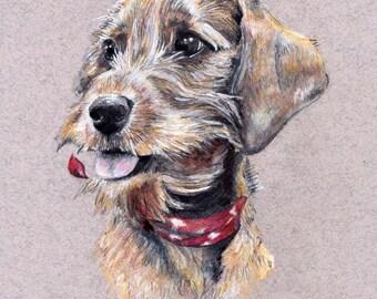 Custom Pet Portrait of your pet - Original artworks of your wonderful furry friends