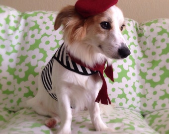 Mini French Beret Hat for Dogs