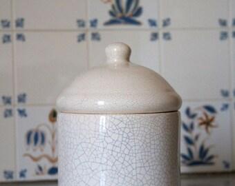 Elegant white pot cracked ceramic design