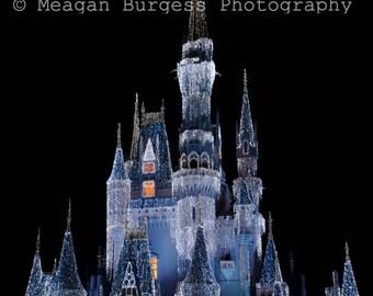 Cinderella's Castle Photo, Walt Disney World Photos, Magic Kingdom Photography, Digital Download