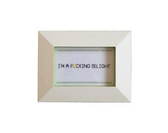 I'm a F*cking Delight framed cross stitch