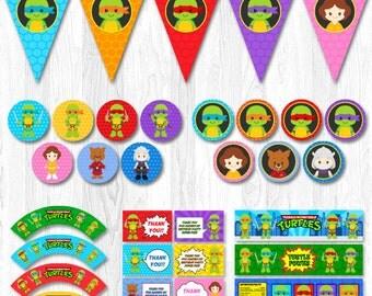 Ninja Turtle Party Package, Ninja Turtle Party Pack, Ninja Turtle Party Set, Ninja Turtle Party Supplies, Ninja turtle decoration, TMNT