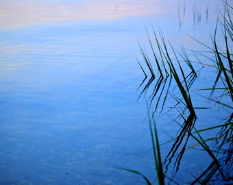 Bay Photography - Edge of the Water