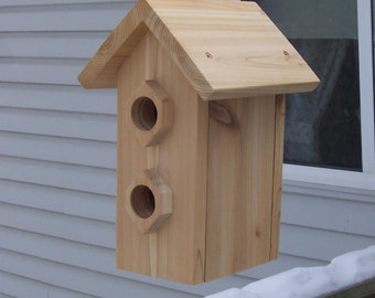 Dule hanging birdhouse