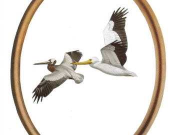 Coastal Wall Art, Pelican Art, Seascape Art, Beachy Art, Original Collage, Sea Bird Wall Art, Beach House Art, Coastal Artwork