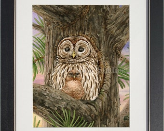 Owl Tree with Barred Owls- archival watercolor print by Tracy Lizotte