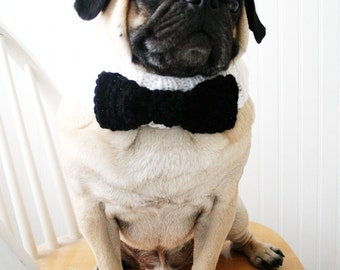 Black Tie Affair Dog Collar - Wedding Dog Collar - Pug scarf - Pug Neck Warmer - French Bulldog Accessories