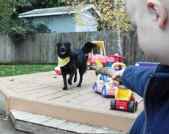 Dog bandana, Yellow Large Pet Bandanna, Soft Collar Cover, Dog Clothing, Ready to Ship Summer CLEARANCE EVENT
