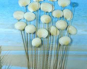 Seashell Stems - Natural Color Ark Seashells  - 20 Seashells for Wedding Bouquets or Centerpieces