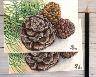 pine cone card set, nature stationery, holiday note card, blank cards, watercolor art print notecards