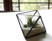 Small Air Plant Terrarium, Glass Octahedron Terrarium Planter, Clear Planter, DiY Kit, Home Decor, Handmade Terrarium