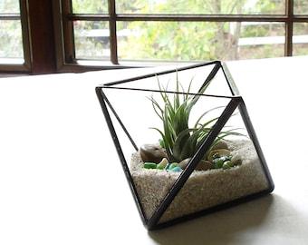 Petit terrarium g om trique air plante terrarium en verre - Kit terrarium plante ...