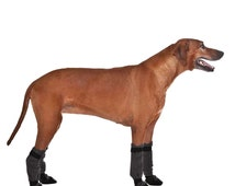 Popular Items For Dog Slippers On Etsy