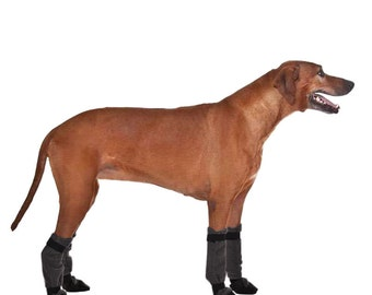 RHODESIAN RIDGEBACK Dog Booties, Dog Winter Boots, Boots for Dogs, Snow Boots, Dog Shoes, Dog Slippers, Waterproof Boots, Dog Clothing