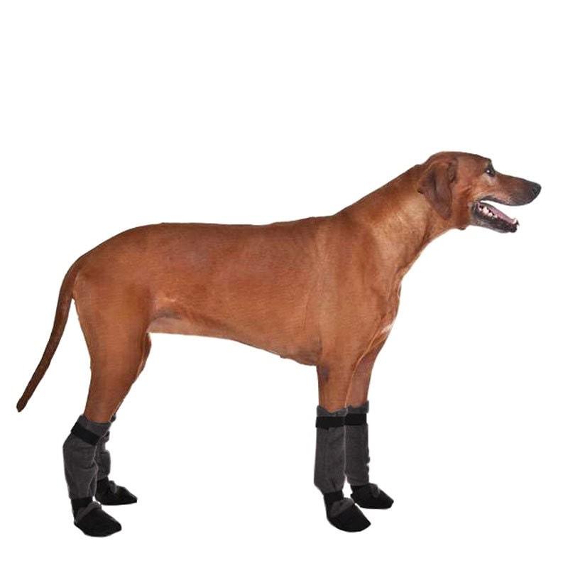 Rhodesian Ridgeback Dog Booties Dog Winter Boots Boots For