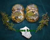 Living Earth Round Orgonite Disc - Transformation - Change - Growth - Earth Connection - Abundance