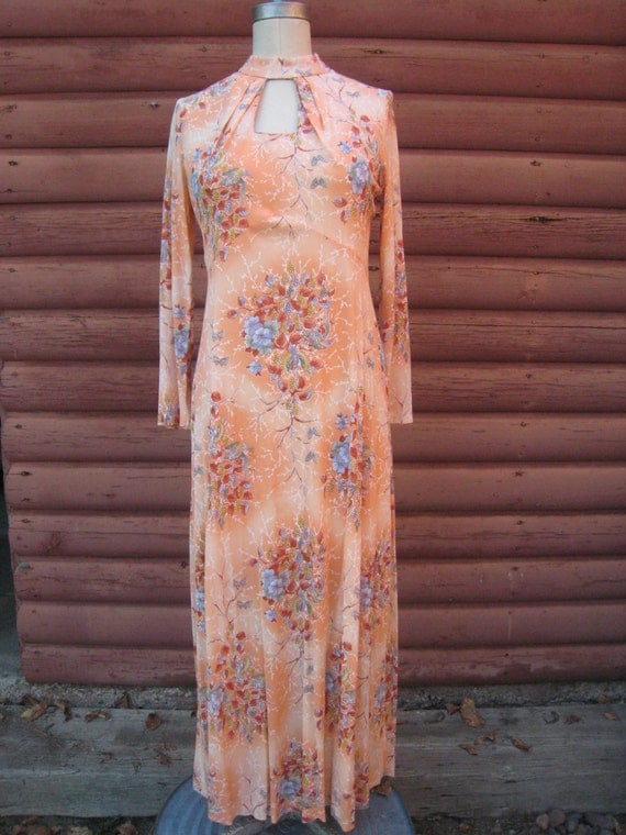 Beautiful Fall Colored 1970s Nylon Polyester Hippie Maxi Dress with Floral Cockatoo Print