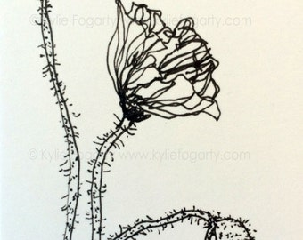 Black and White Poppy and Pod Flower Drawing - SFA - ACEO - Fine Art Miniature- Poppy Flower Study - Wedding Thankyou Gift