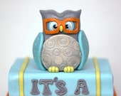 Fondant owl topper. This owl fondant is perfect for your baptism, baby shower, christening or 1st birthday celebration.