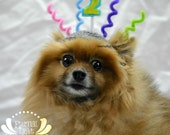 Pet Birthday Hat (XS-XL)
