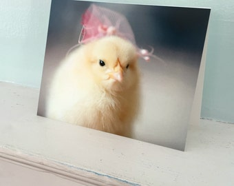 Greeting Card Chicks in Hats Photo Card Chicken Stationary Bird in A Pink Fascinator Baby Animal #35
