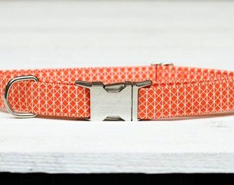 Orange Dog Collar, Orange and White, Male/Female Pet Collar with Metal Buckle