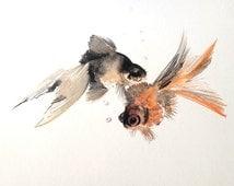 Teo Goldfish painting, original watercolor, black and orange, 11 X 14 in