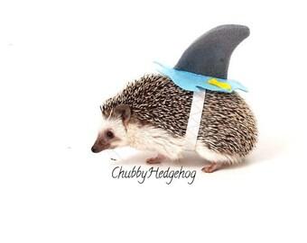 SHARK  Costume   Hedgehog /  Guinea pig