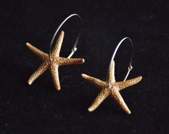 Hoop Starfish Earrings