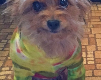 Tye Tie Dye Cotton Hoodie  T Shirt Small Dog Yorkie Terrier Chihuahua Multicolored-Carla Smale