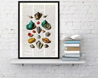 Summer Sale Sea Shell collage VIII Print on Vintage Dictionary Book illustration beautifully upcycled art print ,art print SEA027b