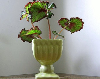 Vintage Chartreuse Planter Vase, Green Pedestal Pot, On Sale