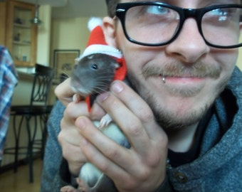 Christmas Rat Hat