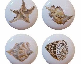 Set of 4 Ceramic Seashells Sea Shells Knobs